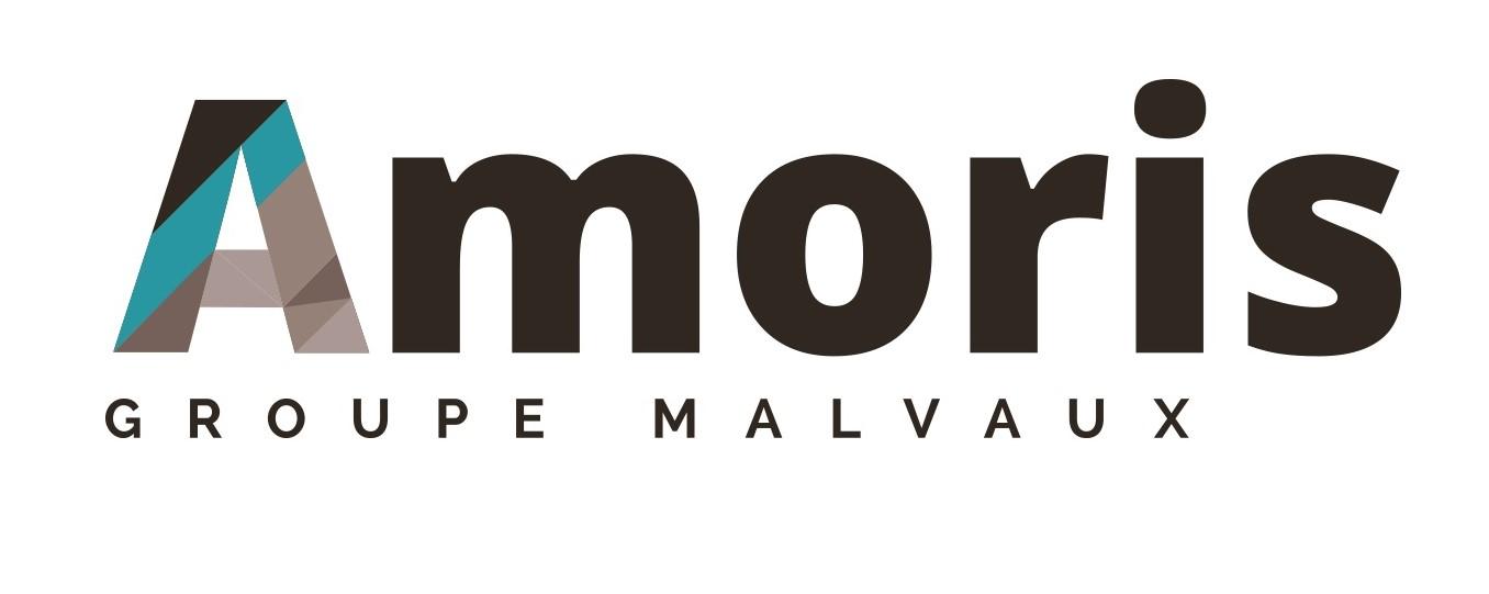 Logo-AMORIS1 - Copie